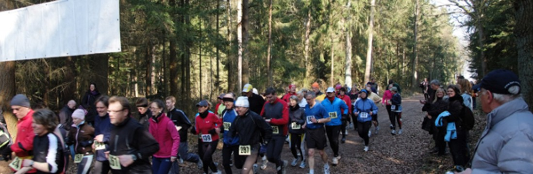 10. LG Alsternord Waldlauf am 2. November 2014